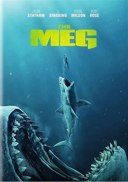 Meg Movies Dvd Megalodon Shark Giant Jason