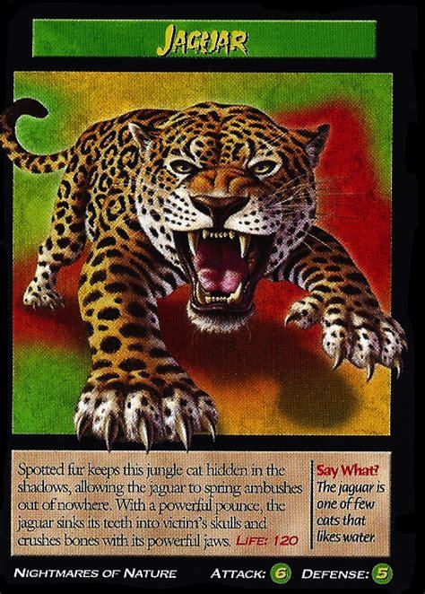 jaguar wierd nwild creatures wiki