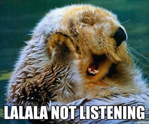 Not Listening Meme - study disorderly conduct
