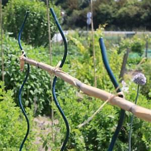 Comment Tuteurer Les Tomates : comment utiliser le bambou au jardin potager ~ Melissatoandfro.com Idées de Décoration