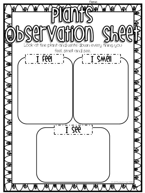 Science Observation Template by Plant Observations All Students Can Shine