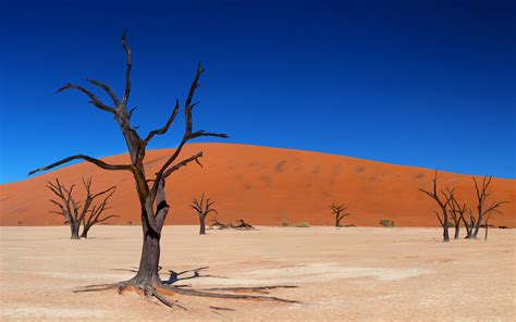 High Quality Wallpaper Of Desert Desktop Wallpaper Of