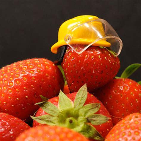 normes haccp cuisine haccp e food management qualichemqualichem