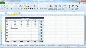 Microsoft Excel 2010 Tutorial  Entering Information Into