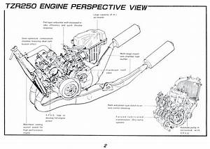 2 Stroke Reed Valve Engine Diagram  Wiring  Wiring Diagrams Instructions