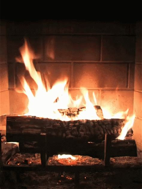 fireplace gif fireplace discover gifs