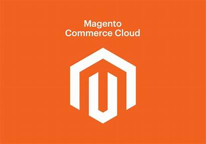 Magento Shopping Cart Ecommerce Comparison Woocommerce Shopify