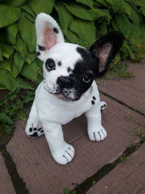 french bulldog  puppy dog realistic ebay puppies