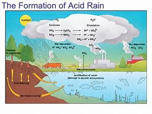 Acid Rain Can Make Limestone Dissolve