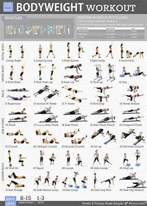 Fitwirr Bodyweight Exercises Poster For Women