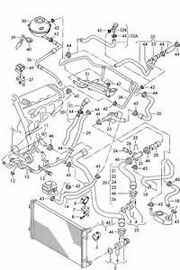 Volkswagen New Beetle Water Hose  Flange  U0026gt  Oil Cooler