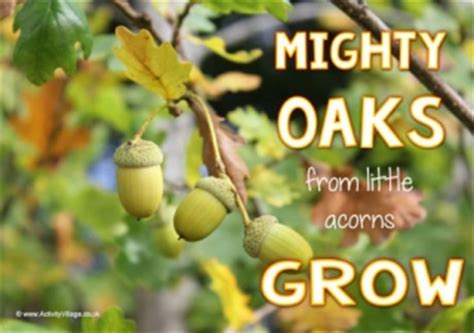 mighty oaks from acorns grow display banner learn to draw an acorn