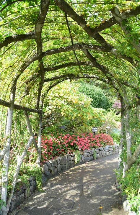 canada butchart gardens travel diaries