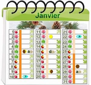 Calendrier Lunaire Potager : calendrier plantation potager calendrier semer planter ~ Melissatoandfro.com Idées de Décoration