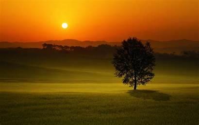 Landscape Sunset Summer Wallpapers Nature Sky Tree