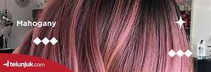 Cokelat Dan Merah Cantik Dengan Perpaduan Warna Rambut Terpopuler Juli 2020 Telunjuk