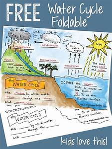 Science Doodle Free  The Water Cycle Interactive Notebook