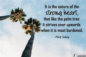 30+ Inspiration... Inspiring Palm Tree Quotes