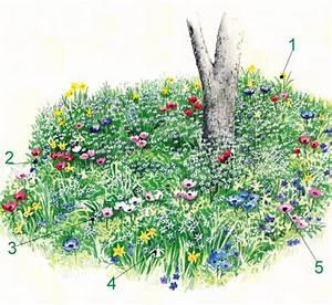 Gartengestaltung Unter Bäumen : blumenbeete unter b umen mit zauberhafte bl tenpflanzen ~ Yasmunasinghe.com Haus und Dekorationen
