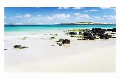 Close Beaches Rural Living Swap Victoria Australia