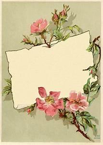 Vintage Rose Frame Images Ramar, Kort och Bilder
