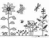 Coloring Garden Vegetable Sheet Pages Sheets Drawing Gardening Colouring Joel Printable Flower Flowers Template Printables Tools Simple Malvorlagen Vegetables Easy sketch template
