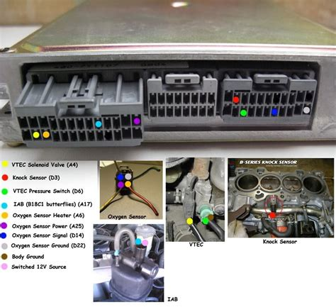 92 00 honda engine wiring guide vtec and non vtec