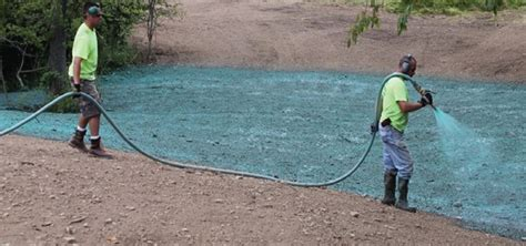 cost of hydroseeding the profitability of hydroseeding turf