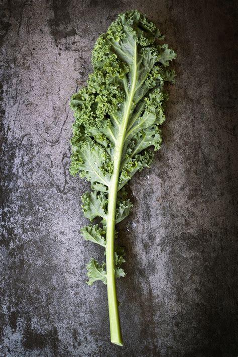 cuisiner le chou kale recettes de chou kale