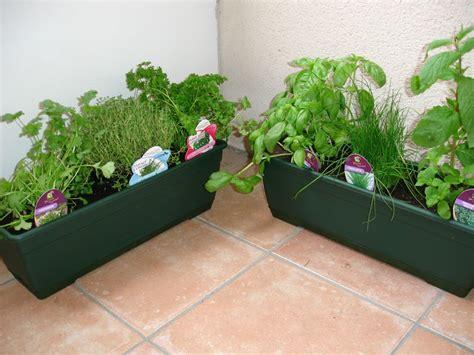 mes brouillons de cuisine jardiniere de plantes aromatiques photos de conception