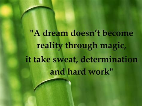 Bamboo Meaning Spiritual Quotes