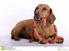 Dog end sausage stock image Image of grill, fast, male