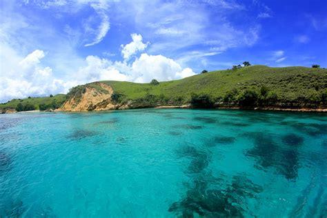 wisata indonesia pulau komodo nusa tenggara timur