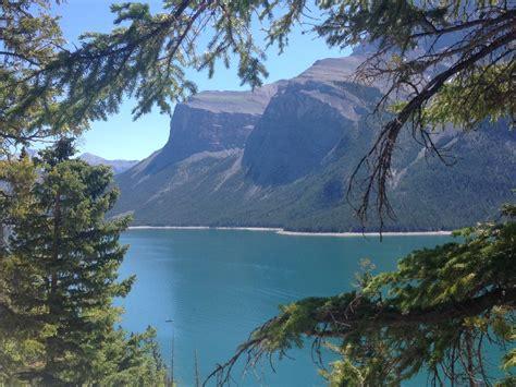 lake minnewanka campground closed  bear damages tent