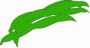 Green Beans Clipart - ClipArt Best
