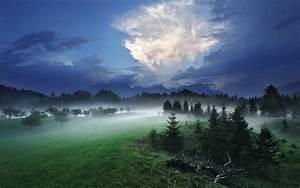 Mist, Sky, Evening, Trees, Germany, Nature, Landscape