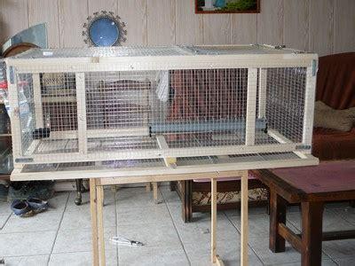 comment cuisiner une perdrix exemple de cage pour cailles fabrication maison