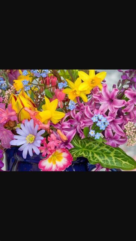 Primavera Flores de primavera Papel pintado flores
