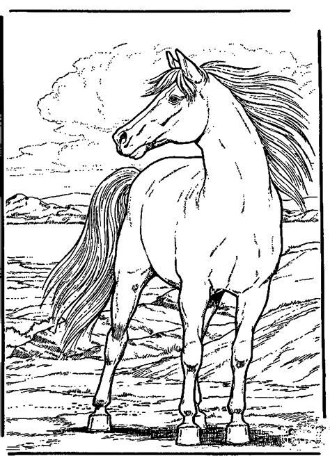 malvorlagen pferde  zum drucken verwandt mit