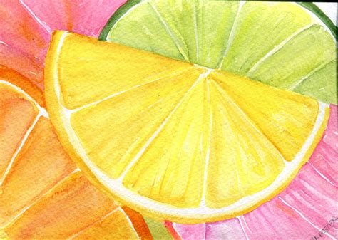 citrus watercolors paintings ruby red grapefruit lemon