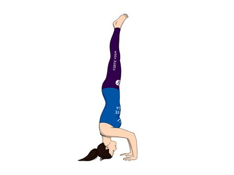 We did not find results for: Tripod Headstand Yoga Pose - Forte Yoga