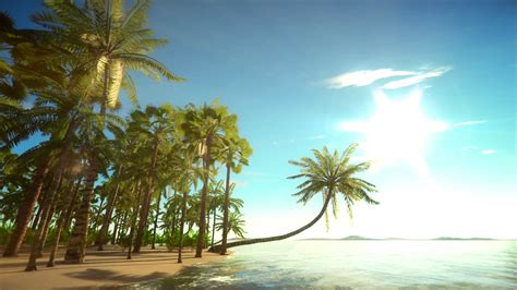 island background heavenly tropical island background motion background
