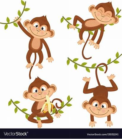 Monkey Vine Hanging Vector Isolated Royalty