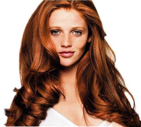 light chestnut brown hair 17 best ideas about chestnut hair colors on