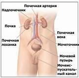 Лечение гипертонии лекарствами форум