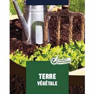 Terre Végétale En Sac : terre v g tale le sac de 40 litres moneden terre ~ Dailycaller-alerts.com Idées de Décoration