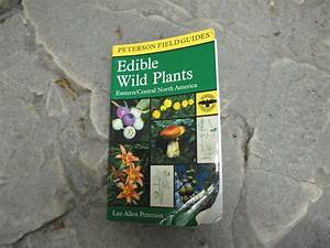 Creek U2019s Top 2 Wild Edible Plant Reference Books  Thoughts