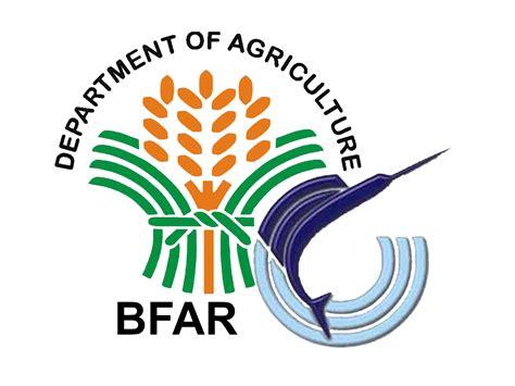 logo bureau links the maritime review