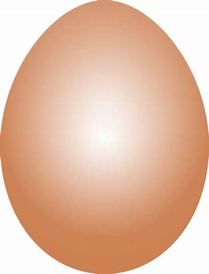 Egg Clipart Brown Transparent Eggs Duck Easter