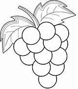 Grape Coloring sketch template